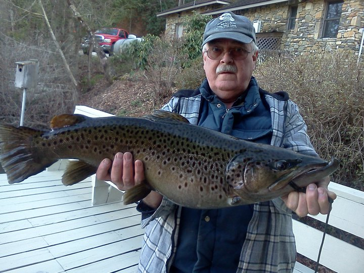 Hidden cove marina tnfishingreport for Tennessee fishing report