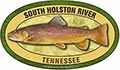 South_Holston_River_TN_brown_trout_120_50