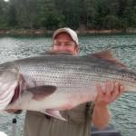 TSF 45 pound striper