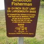 Gibson County Lake Slot Limit