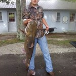 40 lbs Flathead on limb line Josh