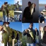 Oct 28, 2014 Lake Guntersville
