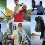 Oct 4, 2014 – Tim's Ford Fishing Report