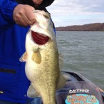 nov4 Kentucky Lake Guide