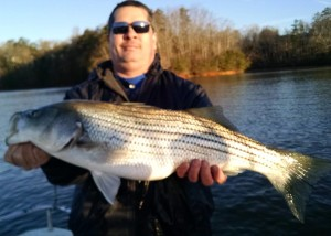 2015 douglas lake tennessee fishing report for Dale hollow lake fishing report
