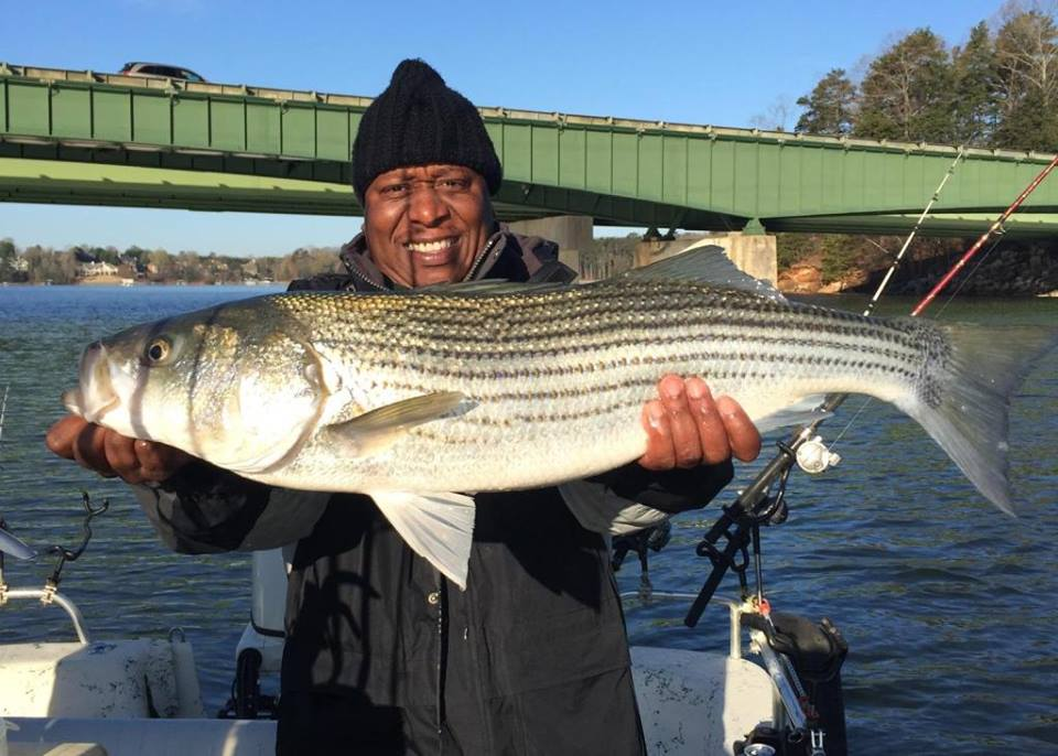 Big fish on lake lanier fishing guides charters for Fishing report lake lanier