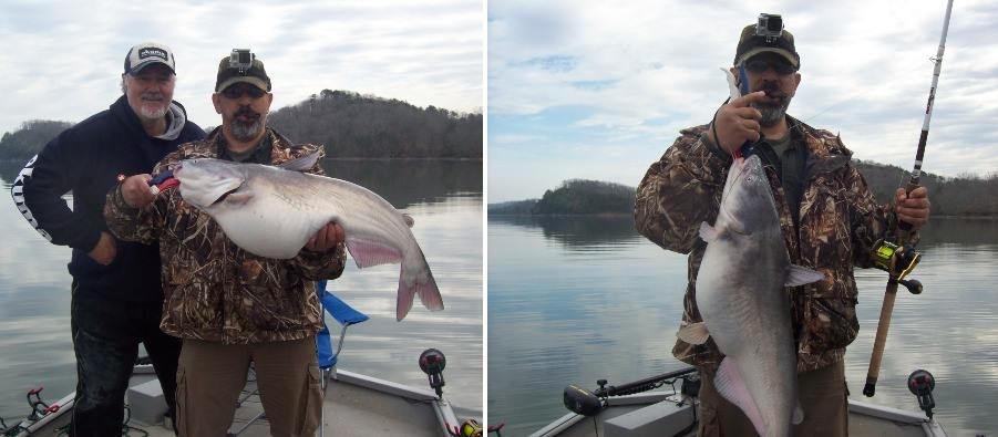 Tennessee river monsters mobile for Watts bar fishing report