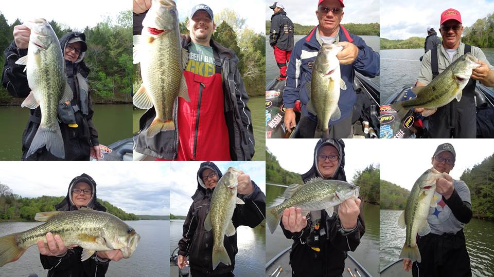 Frontier anglers tn fishing report autos post for Douglas lake fishing