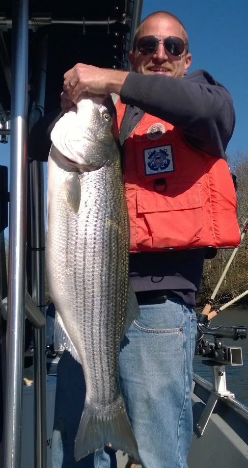 Ritchie howe 2 for Lake cumberland striper fishing report
