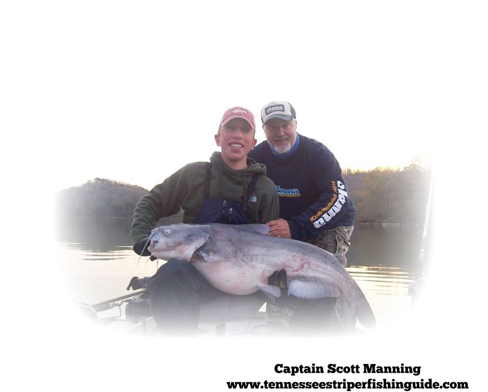 Tennessee River Monsters   TNFishingReport com
